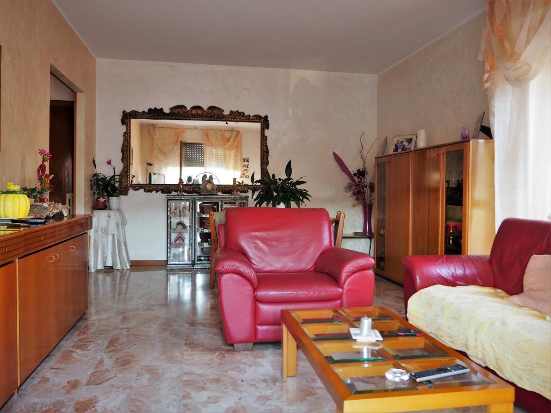 Agenzia domus for Ricerca affitti roma